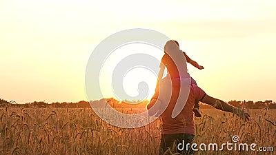 O pai leva seu filho em seus ombros através de um campo de trigo no por do sol Silhueta de uma fam?lia feliz no por do sol E vídeos de arquivo