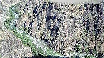 O rio rápido corre através de uma garganta rochosa Nos bancos do rio cresça árvores e arbustos verdes diferentes vídeos de arquivo
