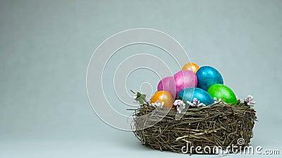 O símbolo da Páscoa tingiu e pintou ovos coloridos está no ninho, penas cai para baixo, conceito do feriado cristão video estoque