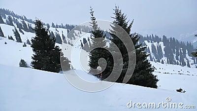 O snowboard o mais rápido O snowboarder extremo jejua equitação filme