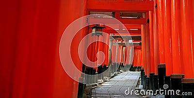O torii de Inari bloqueia - Kyoto - Japão