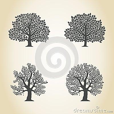 Free Oak Royalty Free Stock Photos - 48854048