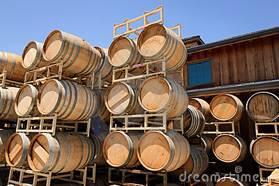 Oak Barrels, Roblar Winery and Vineyard Editorial Stock Image
