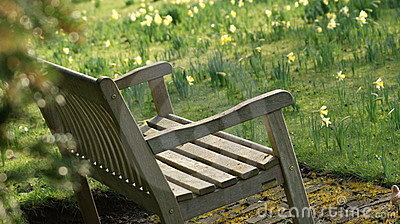 An oak bench in a spring background