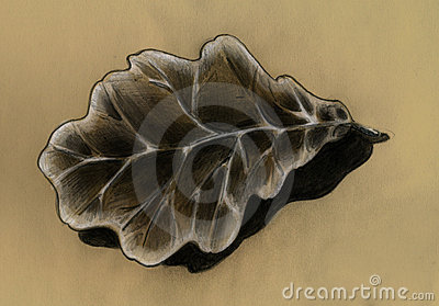 Oak leaf - sketch