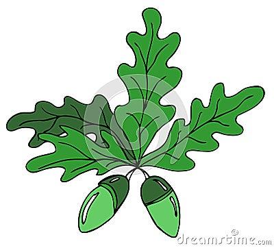 Oak leafs