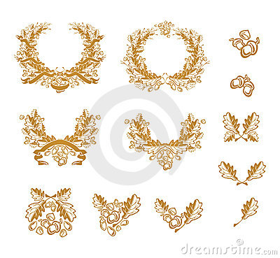 Oak, set of design elements Vector Illustration