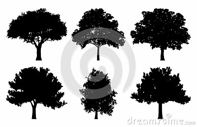 Oak Tree Silhouette Collections Set Vector Illustration