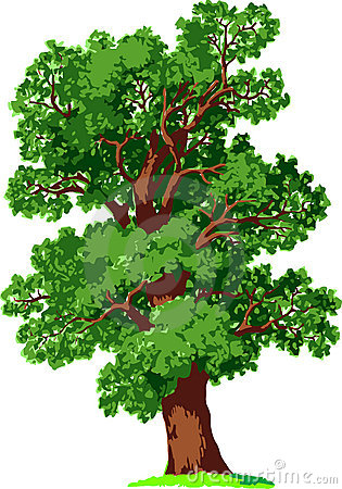 Free Oak Tree. Vector Stock Images - 19252644