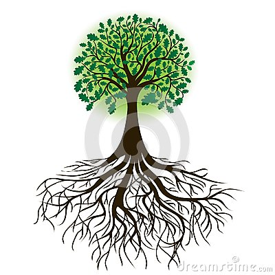 Free Oak Tree With Roots And Dense Foliage, Vector Royalty Free Stock Image - 25026056