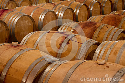 Oak wine barrels in a winery celar