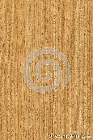 Oak (wood texture)