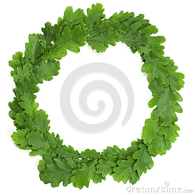 Free Oak Wreath Stock Photos - 31416203