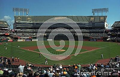 Oakland A s Coliseum Baseball Stadium