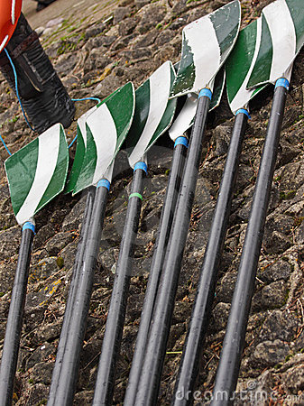 Oars laid out on a quayside