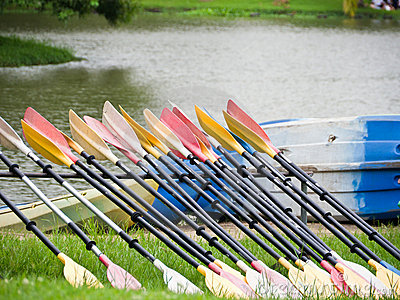 Oars in a row