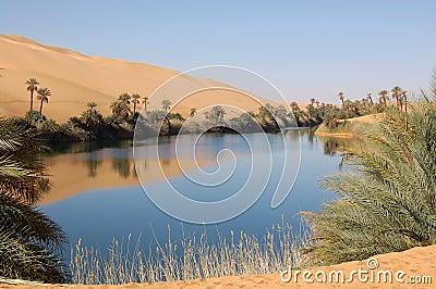 Oase, Sahara-Wüste