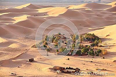 Oasis in Sahara desert