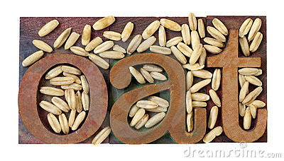 Oat word and grain