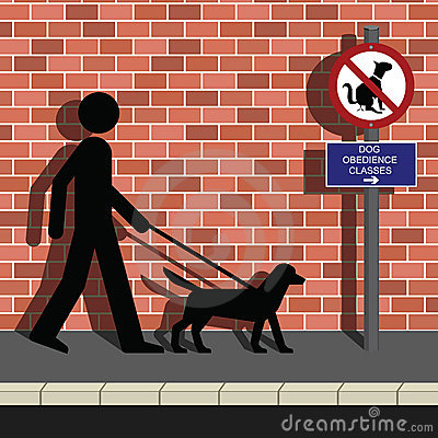 Obedience class