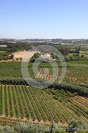 Obidos countryside