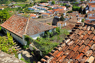 Obidos grodzcy