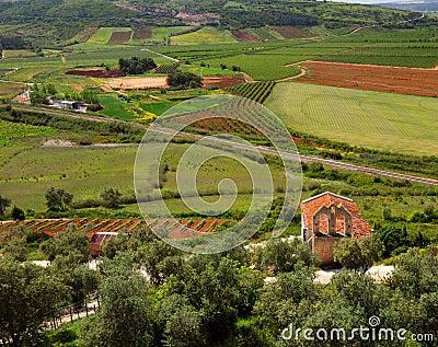 Obidos Landscape