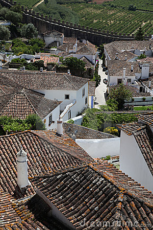 Obidos rooftop view