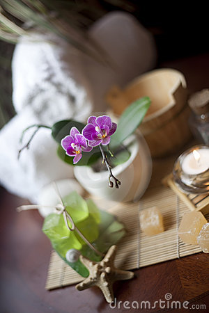 Objects for SPA