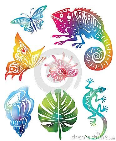 Objetos coloridos da natureza