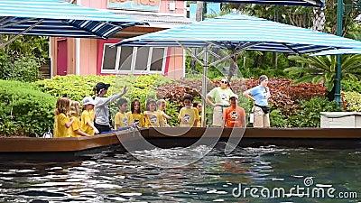 Obozów letnich dzieci wita delfinu, podczas gdy ruszają się ich żebra przy Seaworld zdjęcie wideo