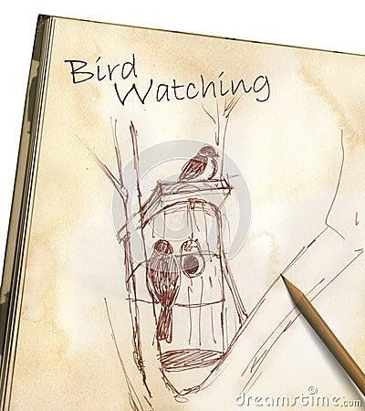 Observação de pássaro - desenho no bloco de notas