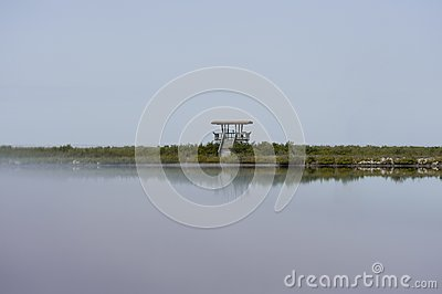 Observation  Tower Reflecting in Water