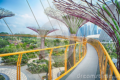 OCBC Skyway, Gardens by the Bay Editorial Photo
