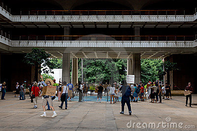 Occupy Honolulu/anti APEC Protest-1 Editorial Image