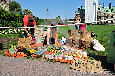 Occupy protesters set up garden display Editorial Stock Photo