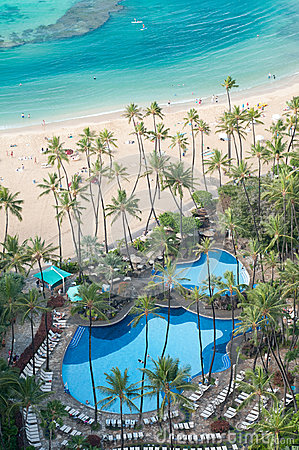 Ocean beach with pool and palm trees