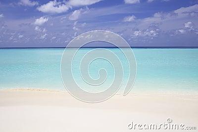 Ocean Beach Sand and Water