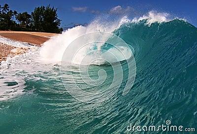 Ocean Beach Wave  on the Shore in Hawaii
