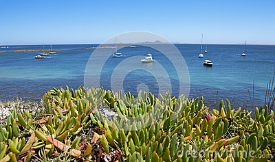 Ocean Boats Travel Australia