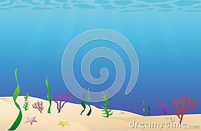 Ocean floor sea bed
