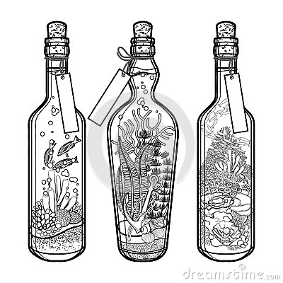 Free Ocean Flora And Fauna In Bottles. Royalty Free Stock Image - 69180986