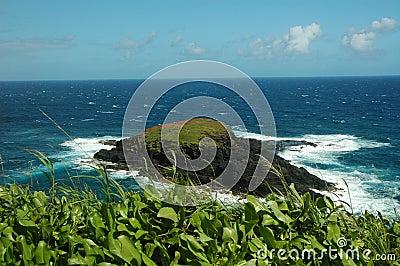 Ocean Island Kaui