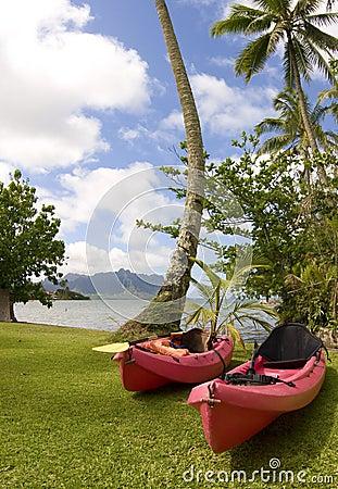 Free Ocean Kayaks At Kaneohe Bay, Hawaii Royalty Free Stock Photo - 14061055