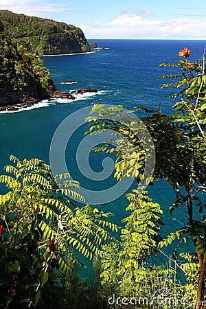 Ocean road, Maui