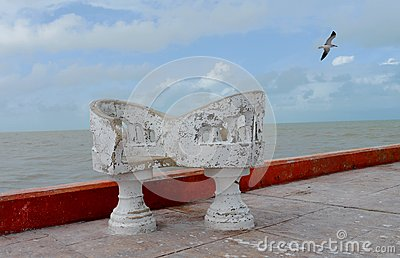 Ocean sea panorama mexico white chairs and gulls