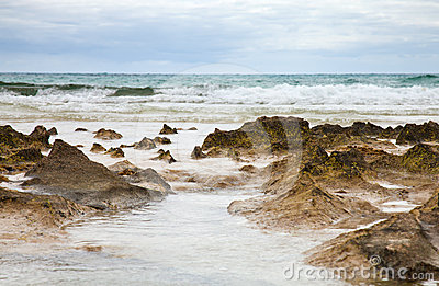 Ocean shore background