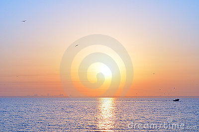 Ocean sunrise and birds