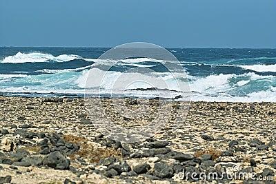 Ocean surf waves roll on the rocky beach