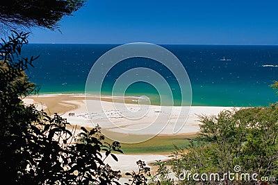 Ocean view abel tasman